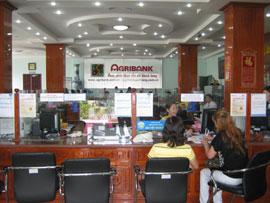 Agribank Soc Trang Helps to Foster Socioeconomic Development