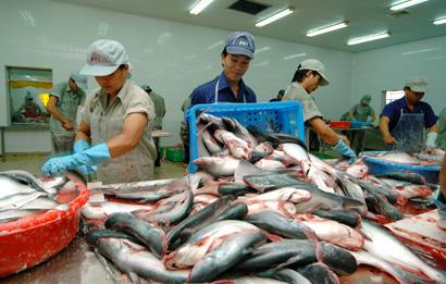 Opportunities for Vietnam's Business