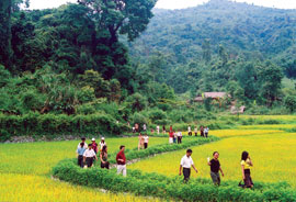 Green Tourism: Strategy of Vietnam Tourism Industry in 2012