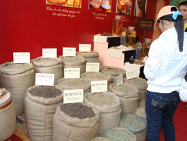 Coffee Export Fee: Worrying Domestic Businesses