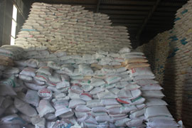 Thinh Phat Food Co., Ltd: Helping to Increase the World Market Position of Vietnam Rice