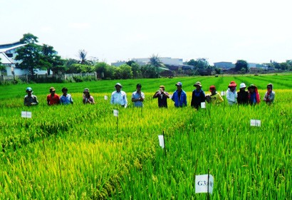 Towards Green, Clean Agriculture