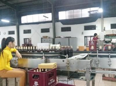 Hanoi Quang Binh Beer JSC: Exercising Thrift
