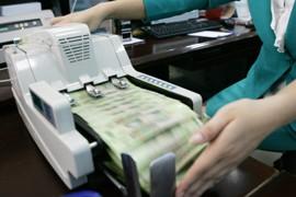 Debt Burdens Risk Capital Loss