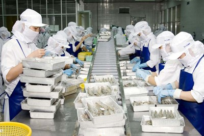 Vietnam Economy 2015: Precautionary Measures against Risks