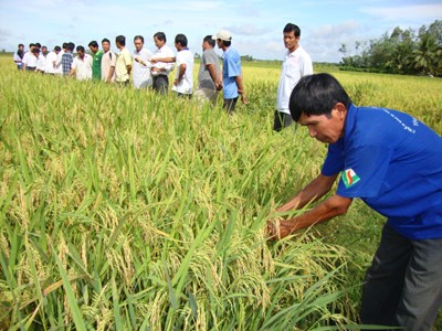 Towards Sustainable Agriculture Development