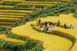 Vietnam Countryside: Challenges on the Horizon