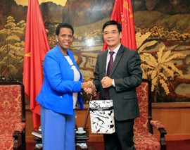 Vietnam-South Africa Focusing on Deeper Trade and Investment Ties