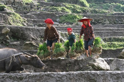 Lao Cai Tourism Development: New Orientations