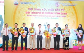 HCM City, Gia Lai Join Hands for Development