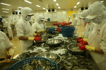 Shrimp Exports Forecast at US$4 Billion in 2018