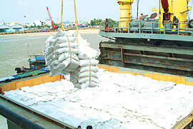 New Rice Trade, Export Decree in the Pipeline