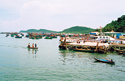 Vietnam Fishery Sector Maps out Development Strategy by 2010