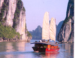 Foreign Travel Firms in Vietnam Urge Gov't to Remove Barriers
