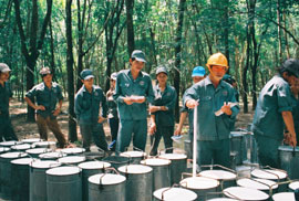 Vietnam Rubber Group Reports US$35.2M Financial Investment in 2008