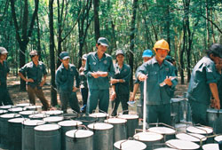 Vietnam, Thailand Join Hands in Rubber Industry