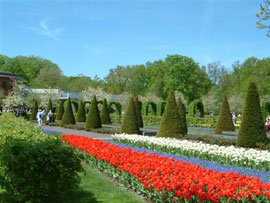 Flower Tourism: Impressive Destinations of the Netherlands