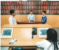 Vietnam Stock Market reaches its Fifth Year: A Difficult Beginning
