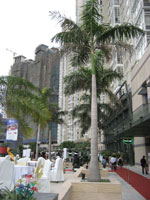 SSG Opens 1st Phase of US$750M Saigon Pearl Complex