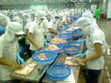 Vietnam Expects US$12.4B from Agro-forestry, Seafood Exports in 2009