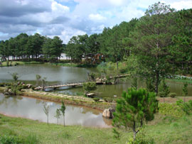 Da Lat City Plans to Be Expanded by 57,000 Ha