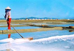Vietnamese Salt Priced Highest in the World