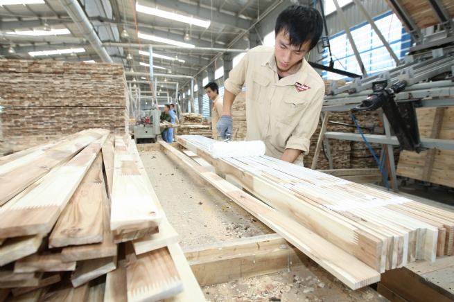 Forestry Product Exports Rise in First Four Months