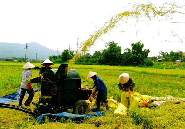 Son La Has 588 Active Agricultural Cooperatives
