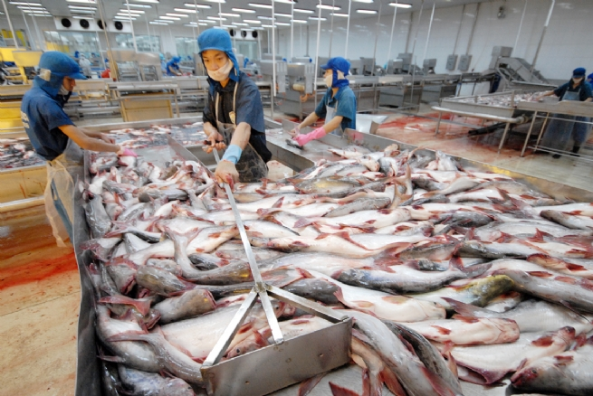 Tra Fish Exports to Southeast Asia Enjoy Strong Surge