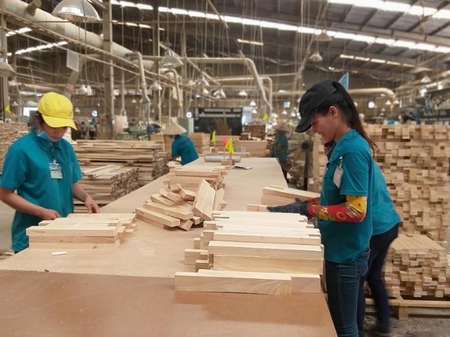 Vietnam Forestry Growth Associated with Market Development