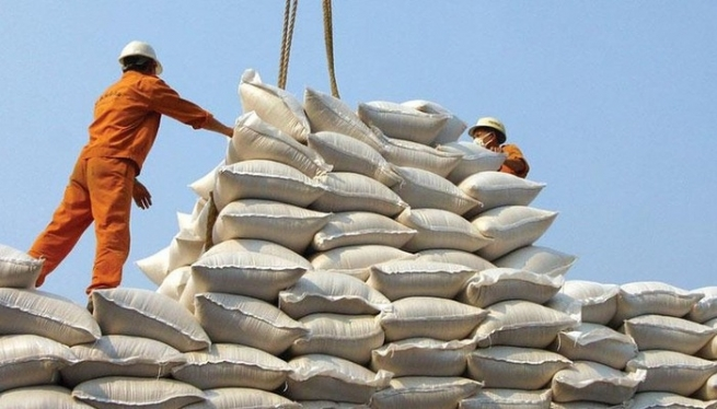 Balancing Food Security and Surplus for Export