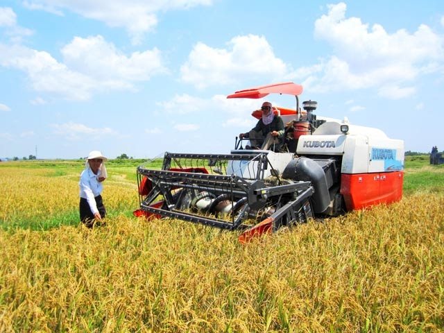Quang Tri Gathers Resources for High-tech Agriculture Development