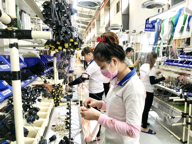 Optimistic Expectations for FDI Inflows