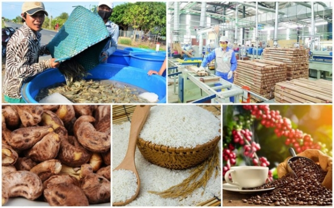 Agricultural Exports Overcome Hardships to Make Impressive Growth